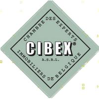 cibex2 v2